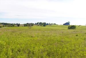 fleetwood-hill-greggs