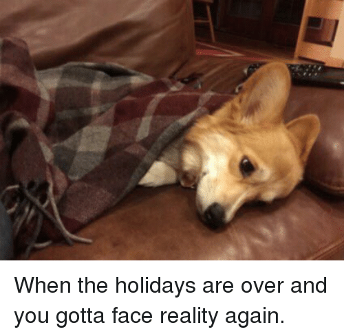 when-the-holidays-are-over-and-you-gotta-face-reality-2083928