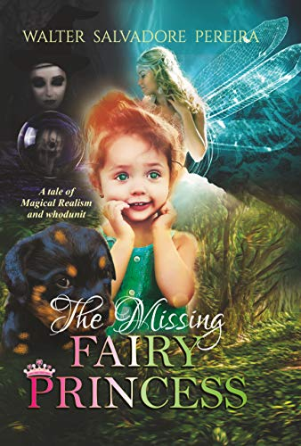 The Missing Fairy Princess copy